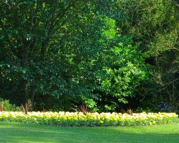 Spring, Terrace Gardens, Richmond